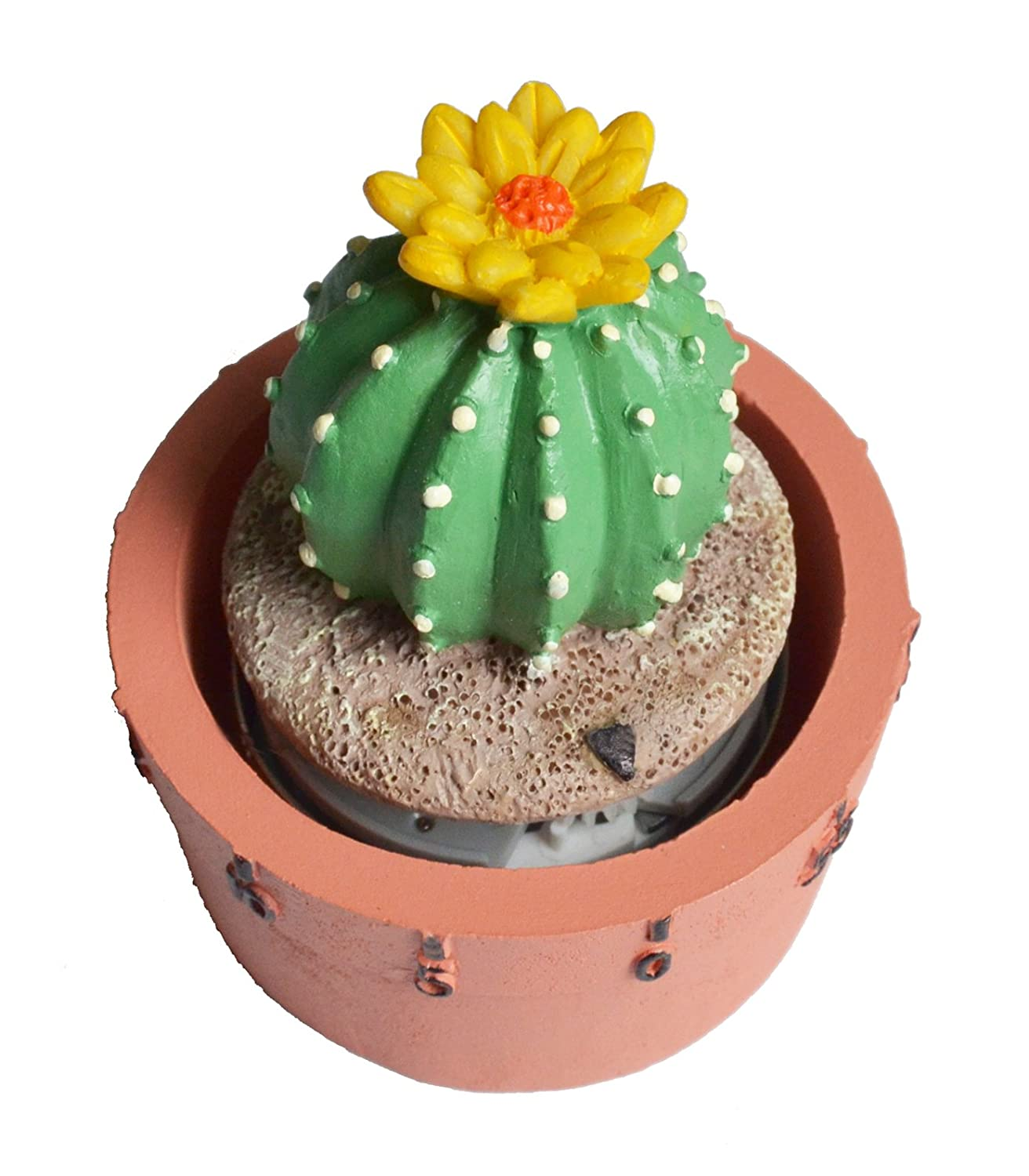 GIFTME 5 Cactus Kitchen Timer Cute Timer(Ball Cactus) T60B