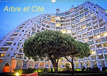 Calendrier Commercial 2021 Arbre et Cité (Calendrier Mural 2021 DIN A3 Horizontal): Thébault