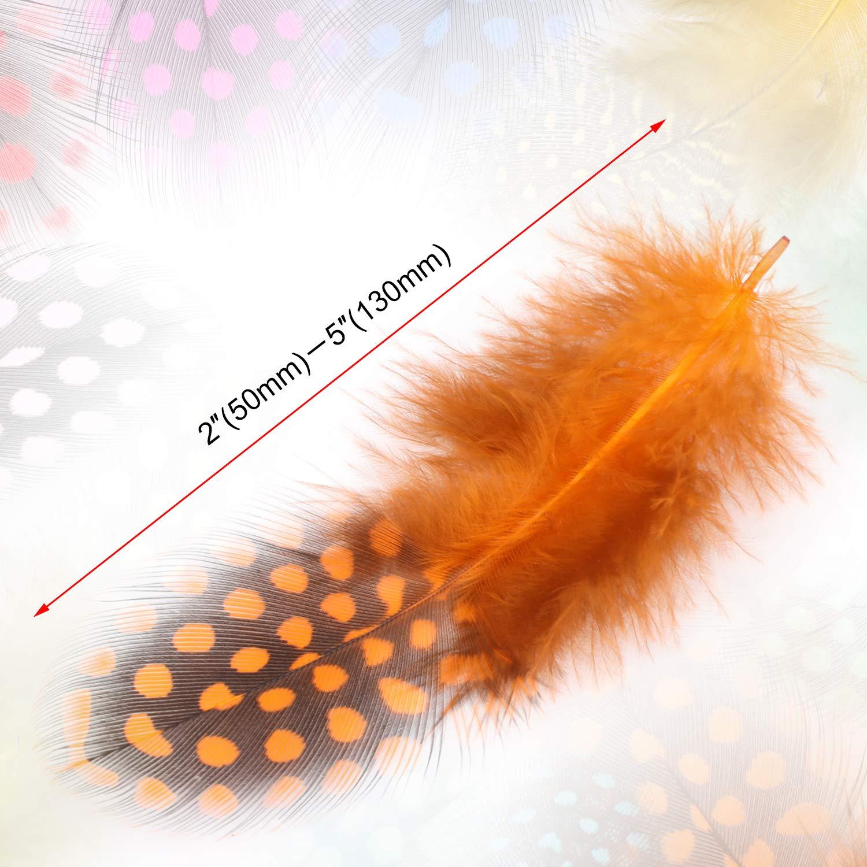 Lot de 120 Plumes Multicolores et tachet/ées, Plumes /à Pois color/ées avec pour,Les Bijoux et la d/écoration de v/êtements 5/–13 cm 10 Couleurs MWOOT