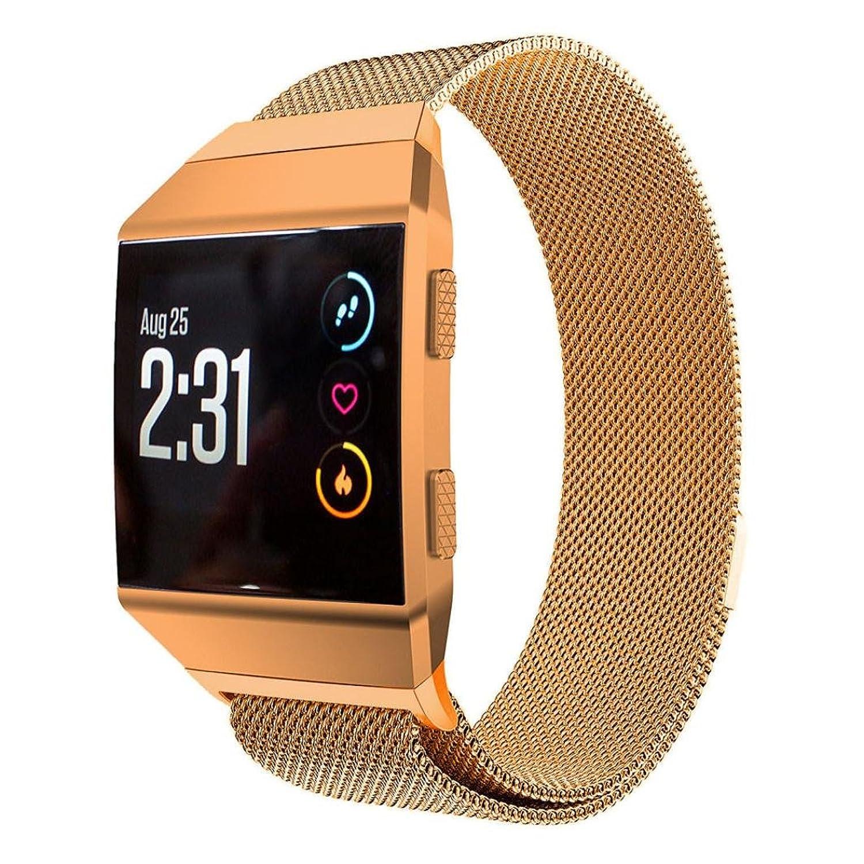 Hometomバンドfor Fitbit Ionic ;ステンレススチール交換用時計バンド手首ストラップfor Fitbit Ionic Smart Watch  ゴールド B079S78RVH