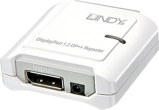 Lindy Rallonge DisplayPort 1m