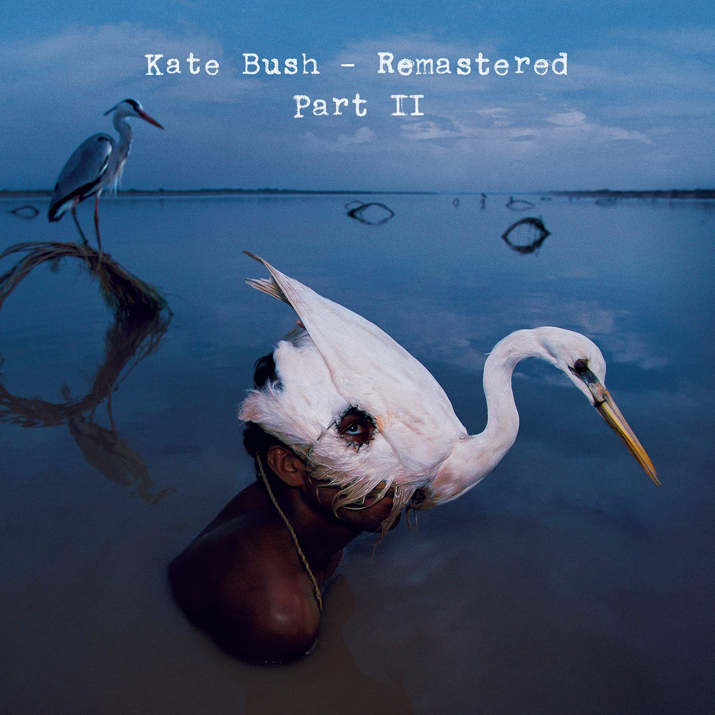 Kate Bush - Remastered Part 2 (CD)