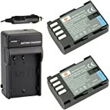 DSTE® アクセサリーキット Panasonic DMW-BLF19 互換 カメラ バッテリー 2個+充電キット対応機種 Lumix DMC-GH3 DMC-GH3A DMC-GH3K DMC-GH4 DMC-GH4H
