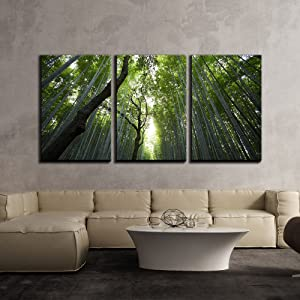 """wall26 - 3 Piece Canvas Wall Art - Nature Landscape of Bamboos - Modern Home Art Stretched and Framed Ready to Hang - 24""""x36""""x3 Panels"""