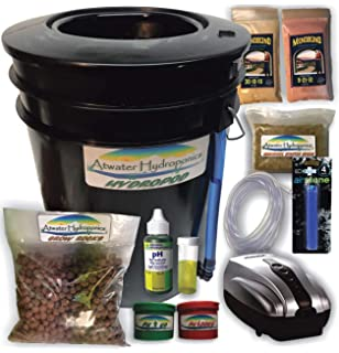 Amazon com : Deep Water Culture (DWC) Hydroponic Bubbler Bucket Kit