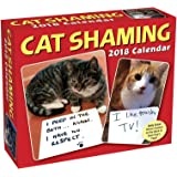 Cat Shaming 2018 Day-to-Day Calendar