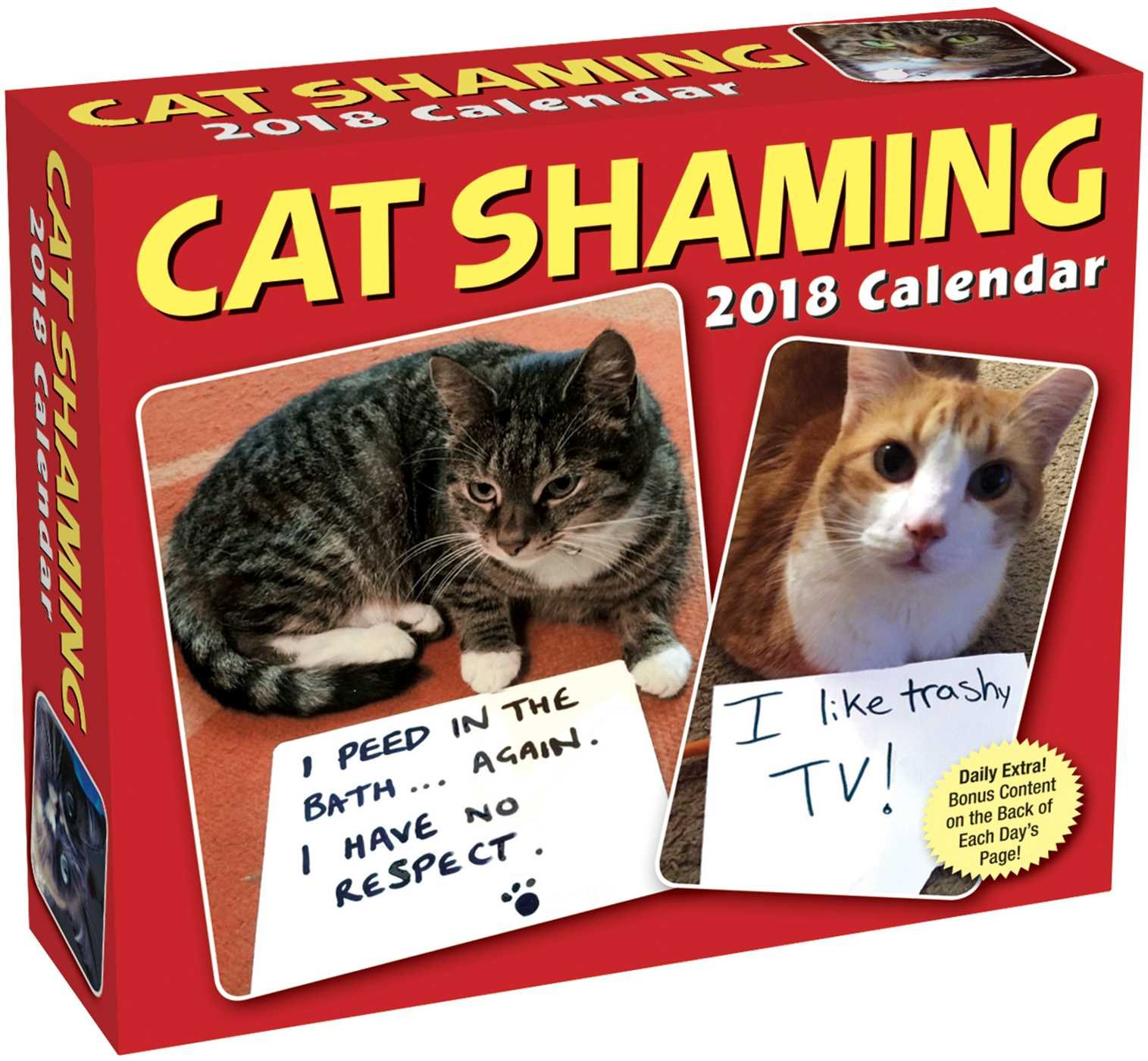 Cat Shaming 2018 Day-to-Day Calendar pdf epub
