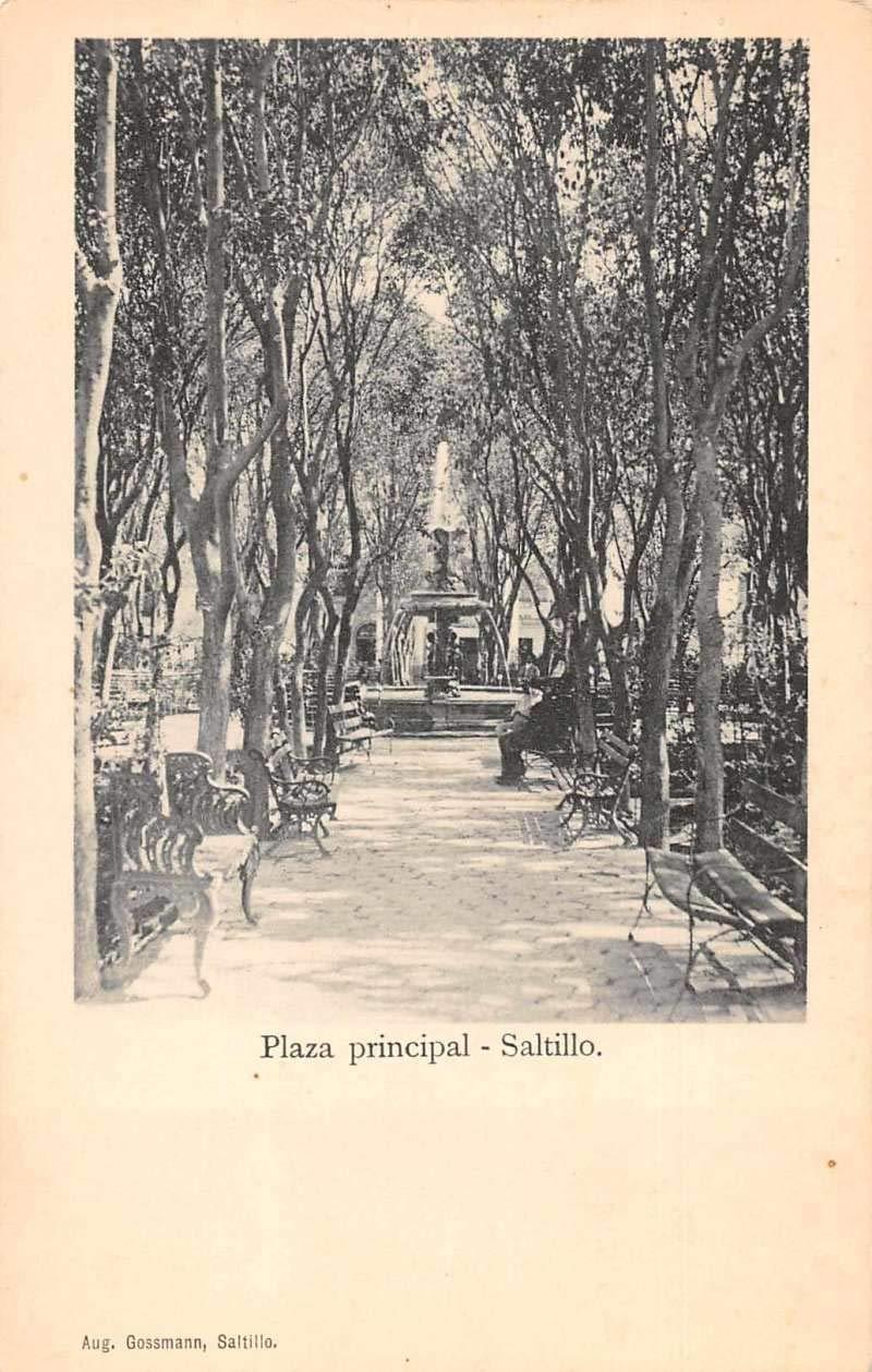 Saltillo Mexico Plaza Principal Scenic View Antique Postcard ...
