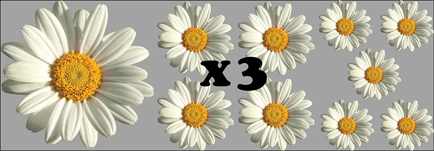 10 pack WaterShed Designs Daisy-Flower-Decals-Car-Stickers-Graphics-Nursery-Wall-Window-Decorations-Art