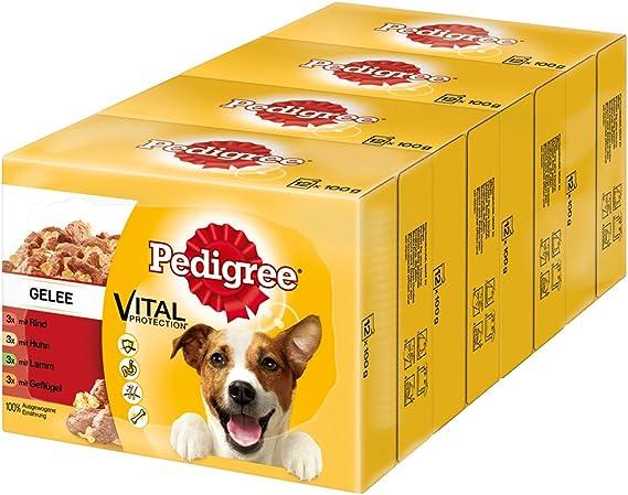 PEDIGREE Vital Protection Comida para perros con pollo y cordero en gelatina, 48 bolsas (48 x 100 g): Amazon.es: Productos para mascotas
