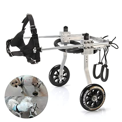 Amazon com : GF Dog Wheelchair Dog Wheelchair Disabled, pet