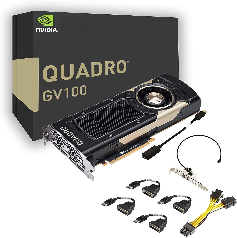 PNY Quadro gv100–Graphics card