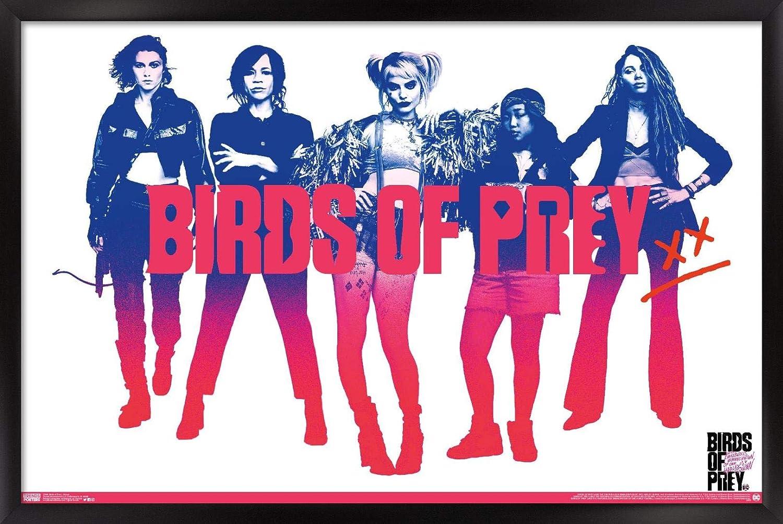 Amazon Com Trends International Dc Comics Movie Birds Of Prey Group 14 725 X 22 375 Black Framed Version Home Kitchen