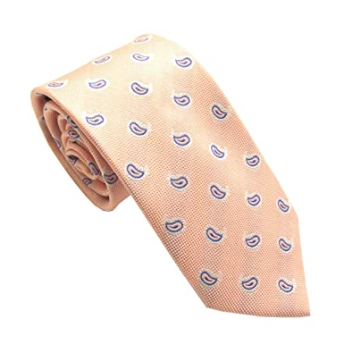 53862f10d4b1 Baby Pink Silk Tie with Small Navy Blue Paisley Pattern by Van Buck:  Amazon.co.uk: Clothing