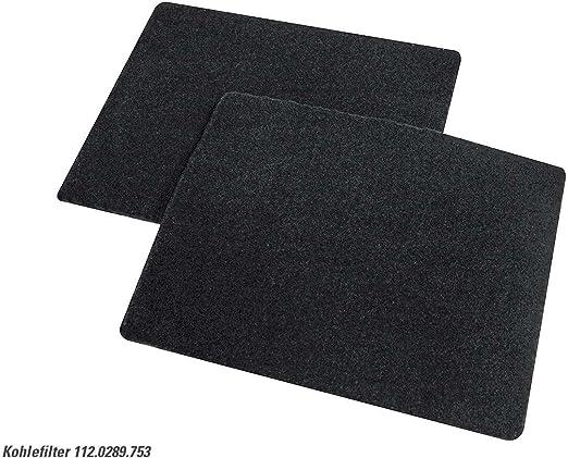 Franke 112.0289.753reaktivie rbarer filtro de carbón activo Carbón de filtro Campana accesorios FDW 908IB XS: Amazon.es: Hogar