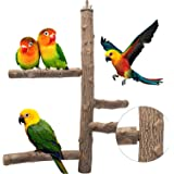 Bird Perch Natural Wood Stand Toy, Parrot Perch Branch for 3-4pcs Small Medium Birds, Birdcage Toy Climbing Stairs for Parake