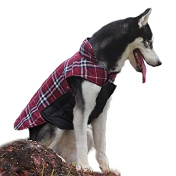 ThinkPet Chaqueta Perro Reversible Ropa para Perro Escocesa Abrigo Perro Impermeable de Cuadros británicos para Perros