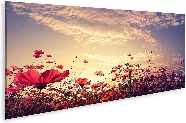 islandburner Cuadro en Lienzo Paisaje Naturaleza Fondo del Hermoso Cosmos Rosa y Rojo Campo de Flores con Sol Colo Vintage Cuadros Modernos Decoracion Impresión Salon