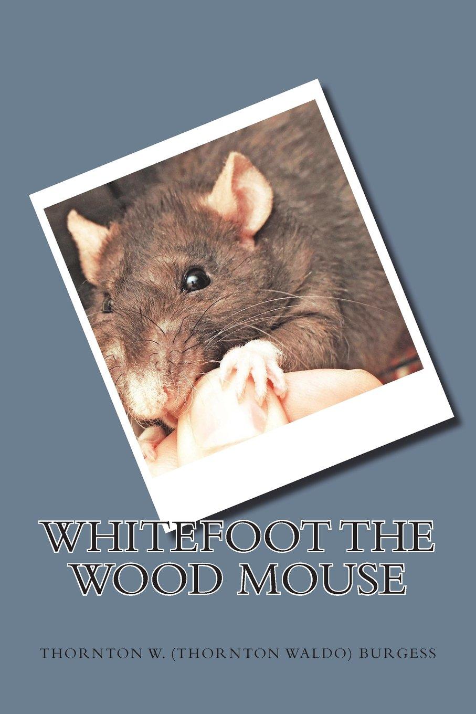 Whitefoot the Wood Mouse: Amazon.co.uk: Thornton W (Thornton Waldo)  Burgess: 9781722004316: Books