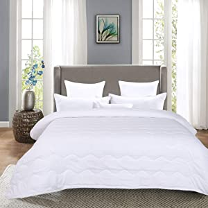 HOMBYS Lightweight Queen Goose Down Alternative Quilted Comforter Queen Size - All Season Plush Microfiber - Machine Washable Duvet Insert- Warmth Hypoallergenic Bed Comforter(Full/Queen,White)
