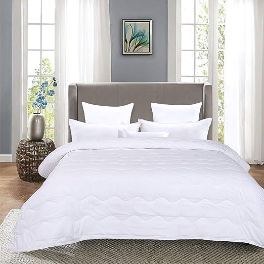 HOMBYS Lightweight Queen Goose Down Alternative Quilted Comforter Queen Size - All Season Plush Microfiber - Machine Washable Duvet Insert- Warmth Hypoallergenic Bed Comforter(Full/Queen,White)