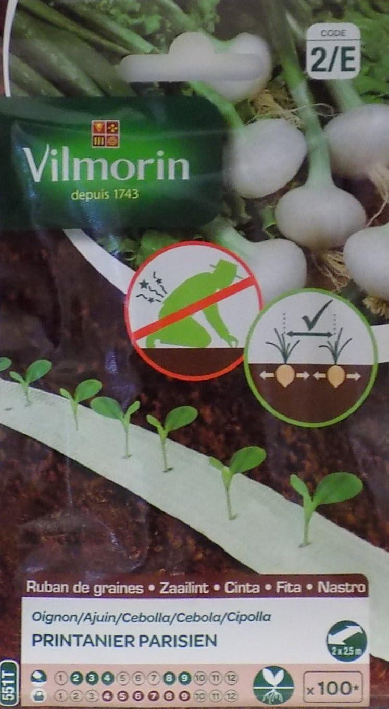 Vilmorin 2 Cintas con 100 Semillas Cebolla PRINTANIER Parisien ...