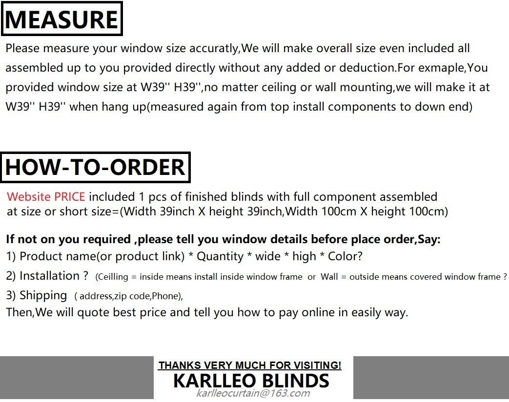 Amazon.com: Window Sunscreen&Blackoutscreen Double Roller Blinds ...