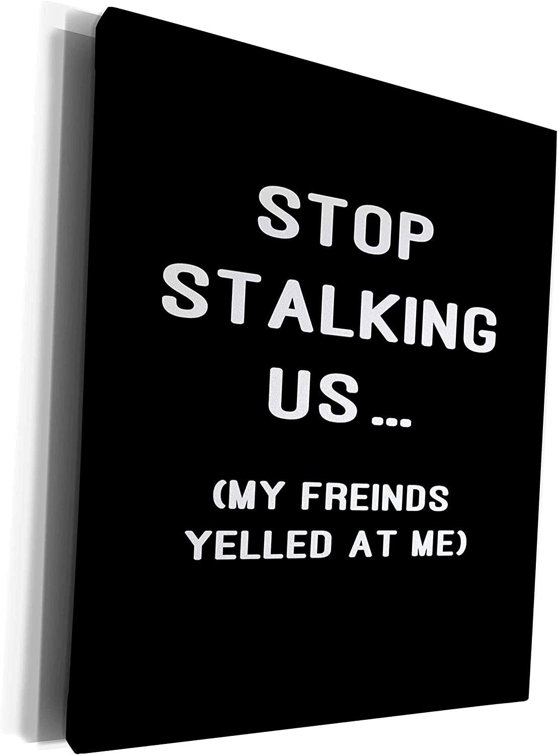 3dRose AMansMall Funny Quotes - Stop Stalking US, My Friends Yelled At Me, Quote, 3drsmm, Museum Grade Canvas Wrap (cw_292728_1)