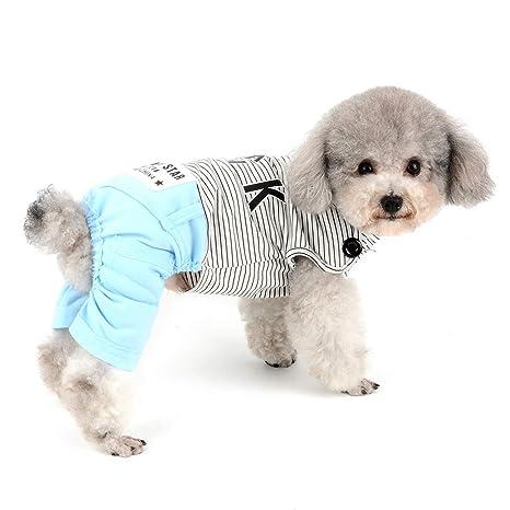 SELMAI - Traje de Chihuahua para Mascotas con diseño de ...