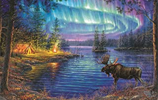 product image for Northern Night 1000 pc Jigsaw Puzzle by SunsOut