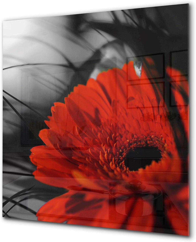 Antiprojections verre s/écurit/é Antiprojections cuisine verre Fleur rouge 6 Antiprojections avec photo BS03 S/érie fleurs