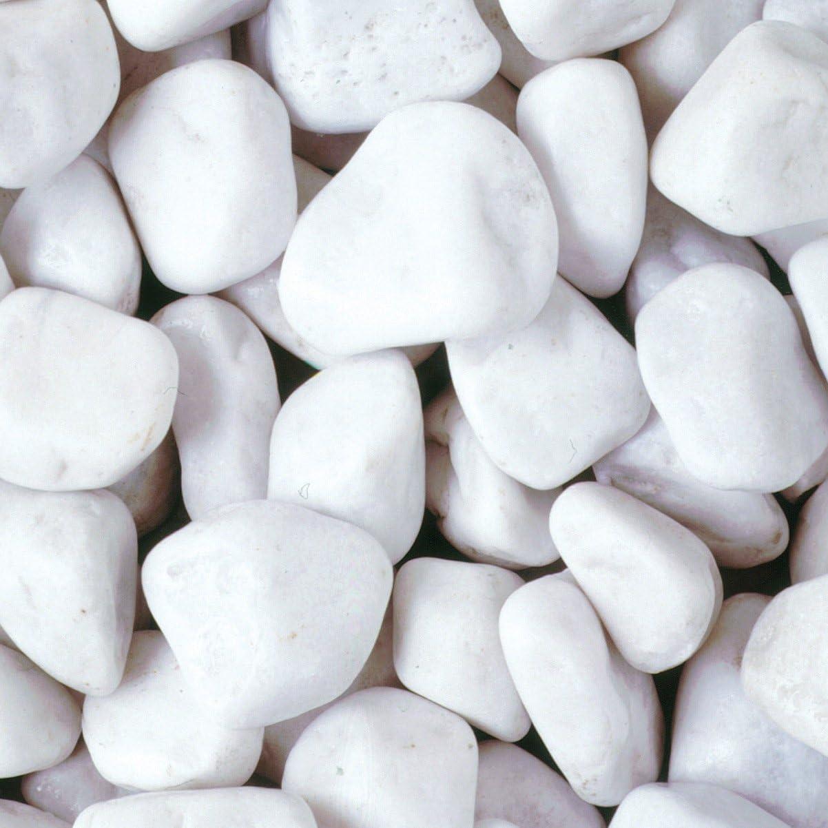 Piedras decorativas para jardín RockinNature, 20 a 40 mm, 15 kg: Amazon.es: Jardín