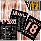 2002 Posters 18th Birthday Decorations for Her, 18th Birthday Gifts for Girls, 18th Birthday Party Supplies, Includes 3…