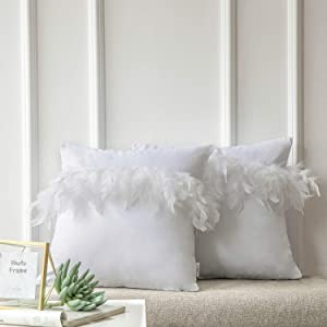 Ashler Pack of 2 Throw Pillow Cases Luxury Decorative Soft Velvet Cushion Covers with Feather for Couch Bed Living Room and Office Chair, White 22 x 22 inches 55 cm x 55 cm