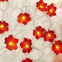 Hojas de otoño, Ainkedin guirnalda otoño, 10 luces led decoracion, Luces decoracion halloween, Adornos navidad…