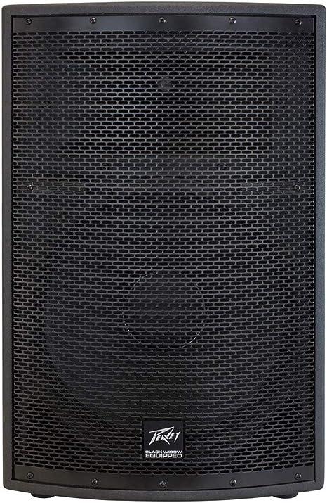 PEAVEY SP Serie SP2 - Caja para Altavoces: Amazon.es: Electrónica