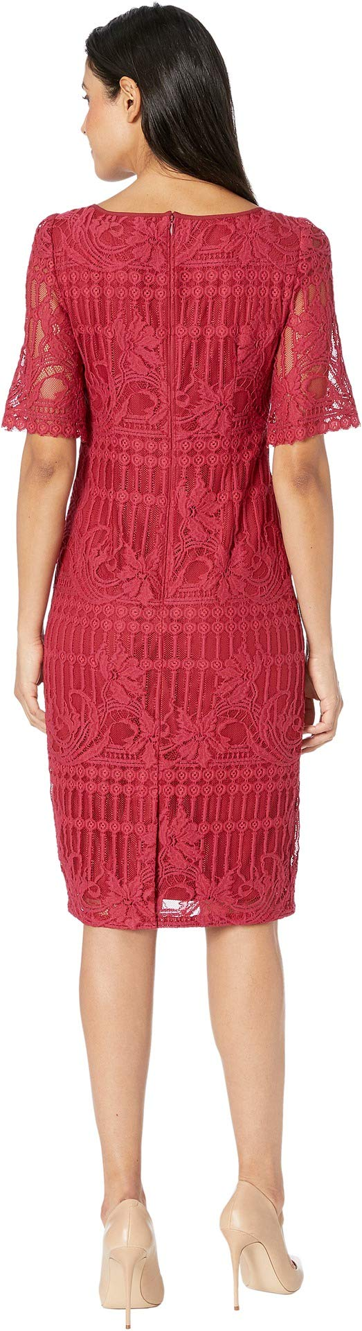 Adrianna Papell Womens Embroidered Scalloped Sheath