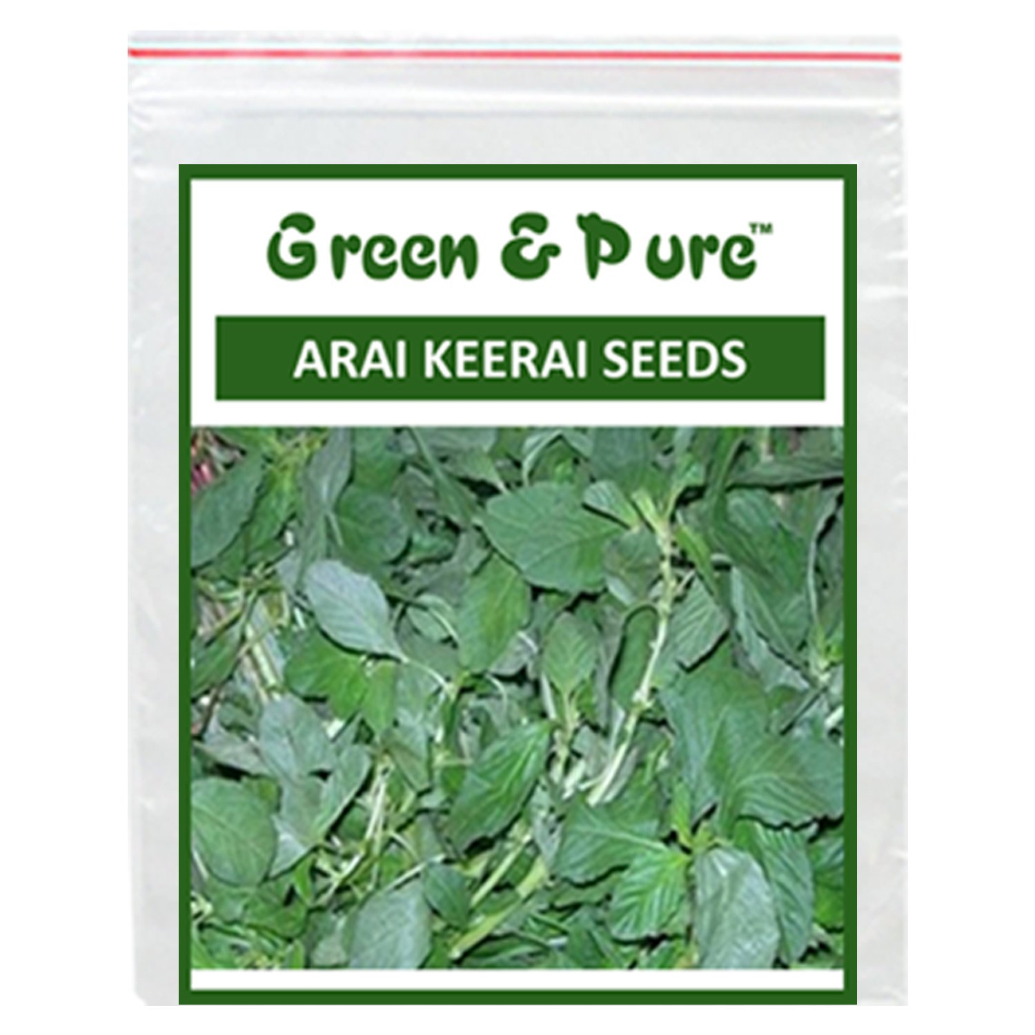 Gongura for Kitchen//GARDEN 5X-Green and Pure-High Yield Organic Vegetable Seeds