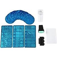 Nail Stamp Plate Nail Art Image Placas De Estampación Steel Stamper Scraper Set Nail Art Tools
