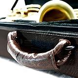 Sky ALTLW201 Alto Saxophone Case