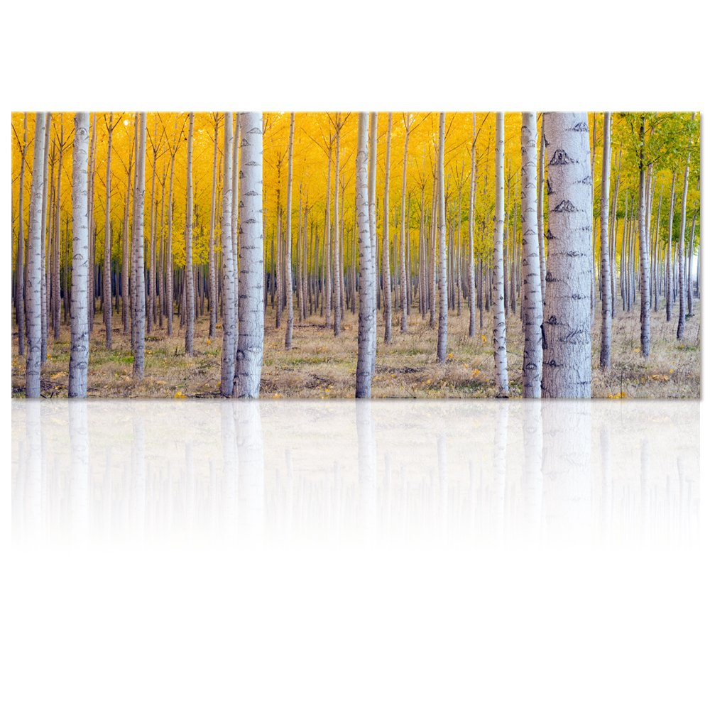 Large Size Autumn Forest Canvas Wall Art Prints,White Birch Tree Forest Painting Printed on Canvas,Framed And Stretched,Ready to Hang for Home,Living Room Bed Room Hotel Wall Mural Decor