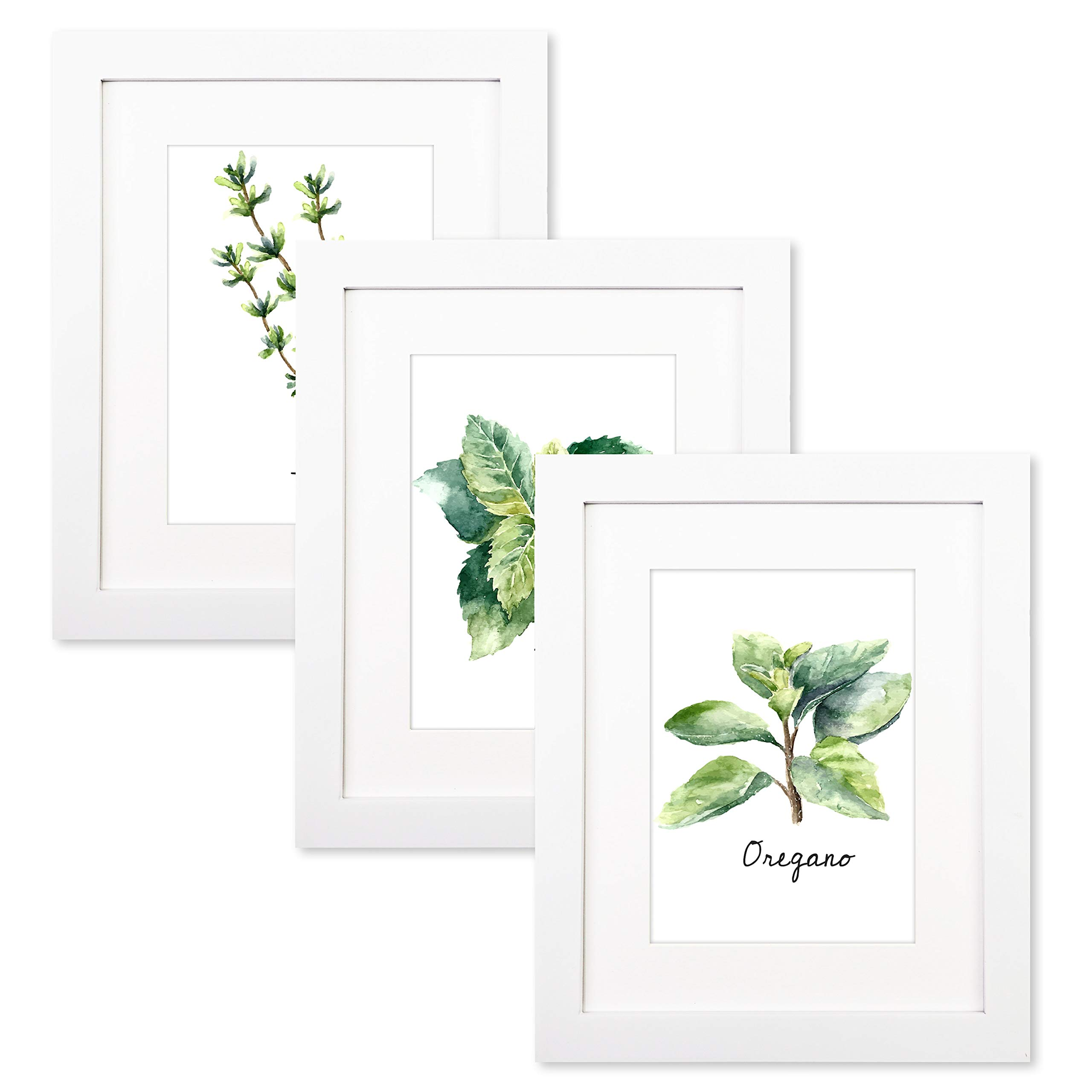 Trees&Forrest 8'' x 10'' White Picture Frames Mat to 5'' x 7'' Included Glass Front for Wall Tabletop Artwork Display Pack of 3