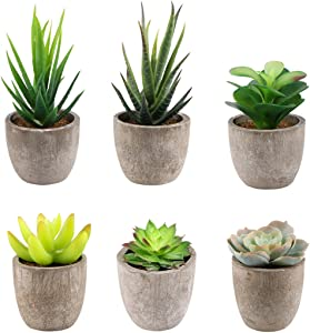Yoodelife Assorted Faux Succulents Set of 6 Artificial Potted Plants Fake Cactus Aloe, Realistic Looking