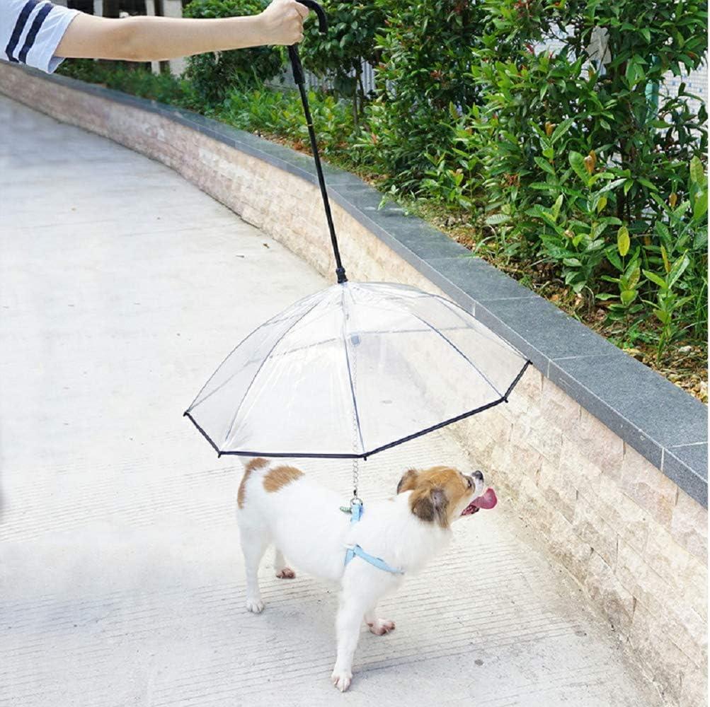 Best Dog umbrella with leash 7