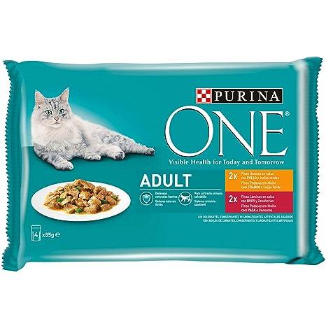 Purina ONE comida húmeda para gato adulto filetes en salsa con pollo 12 x [4