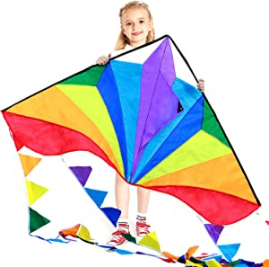 HONBO Large Delta Kites 54x31 for Kids and Adults for Beach Trip Outdoor Games,Perfect for Beginners,String Line Included Toys Easy to Fly Kites with Colorful Colors Tail