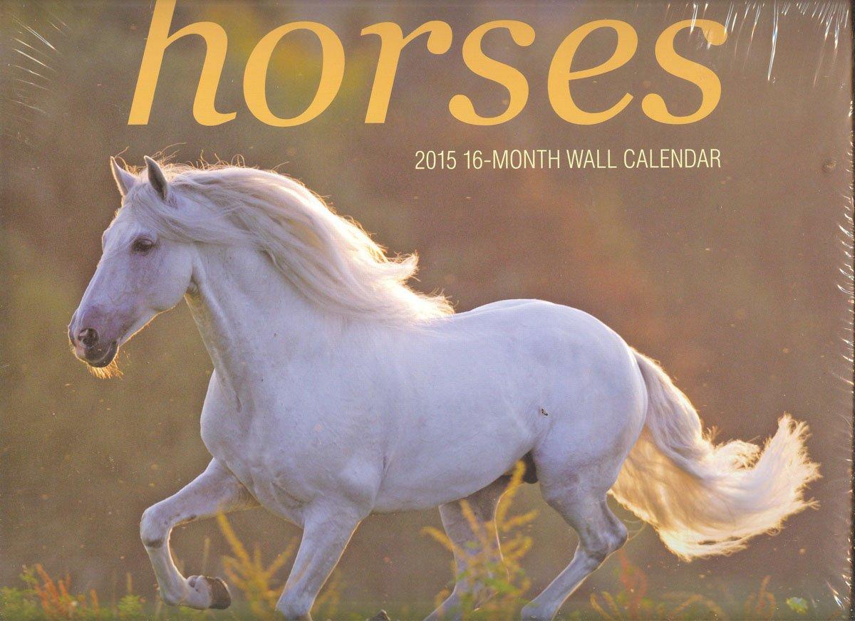Download 2015 Sixteen Month Wall Calendar 'Horses' ebook