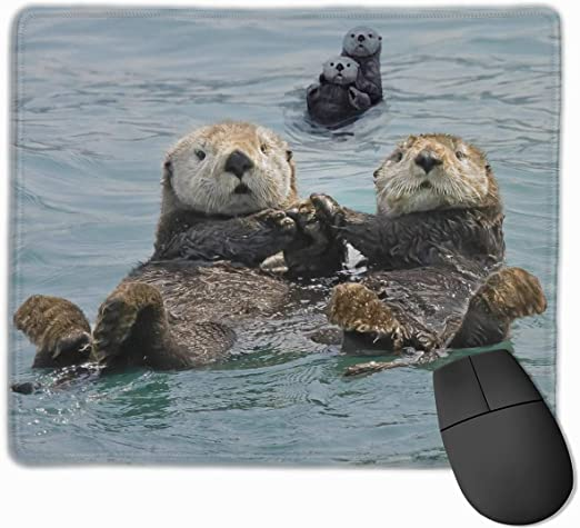 ManSanTuBaZhu Alpaca Black Cat and Sloth Non-Skid Personalized Designs Gaming Mouse Pad Black Cloth Rectangle Mousepad Art Natural Rubber Mouse Mat with Stitched Edges 9.811.8 Inch