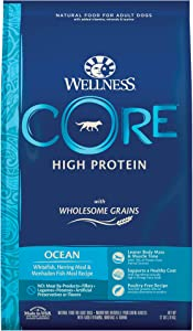 Wellness CORE Wholesome Grains Dry Dog Food, Ocean Recipe, 22 Pound Bag