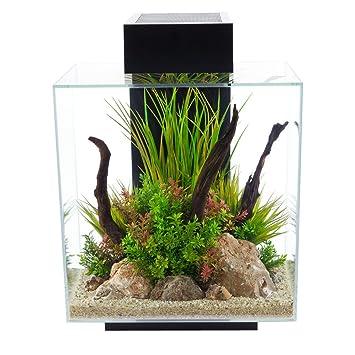 Hagen Aquarium | Amazon Com Hagen 12 Gallon Fluval Edge Aquarium Kit Pet Supplies